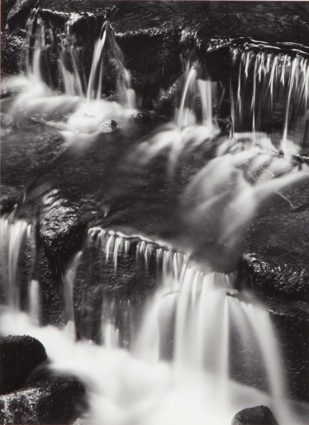 Ansel Adams, Fern Spring, Dusk, 1961