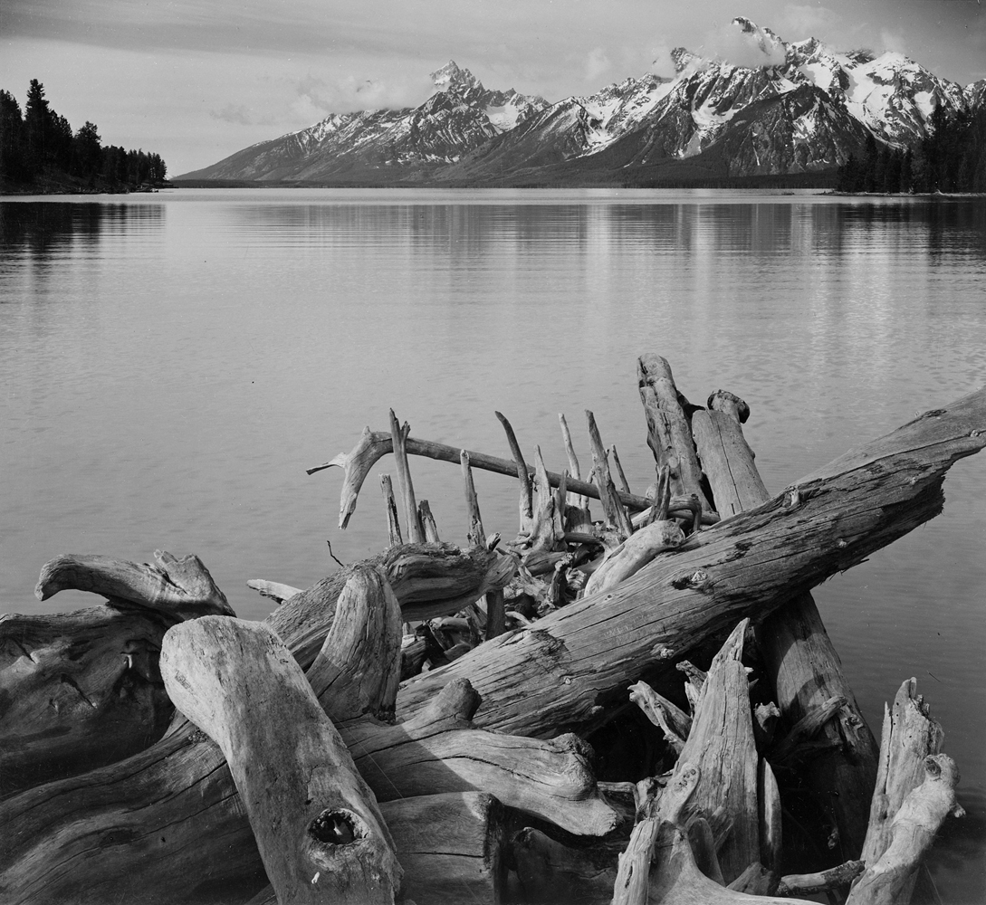 Ansel Adams - Tetons and Jackson Lake, Driftwood, 1942