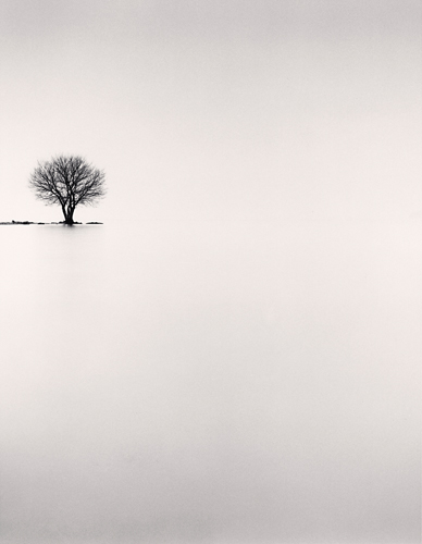 Michael Kenna, Biwa Lake Tree, Study 2, Omi, Honshu, Japan, 2002