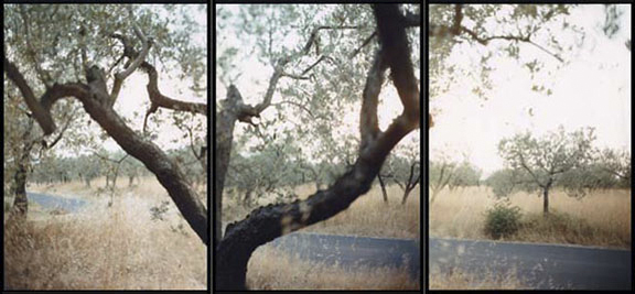 JoAnn Verburg, Counterpoint, 1999, 40 inches x 7.5 feet, chromogenic print, edition of 5, price on request