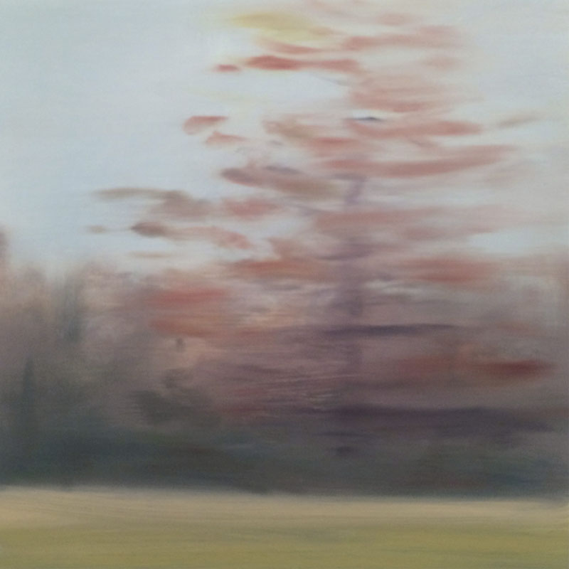 Linda Davidson, Pink Tree, 2015, 12 x 12 inches, oil on linen on panel, $600.