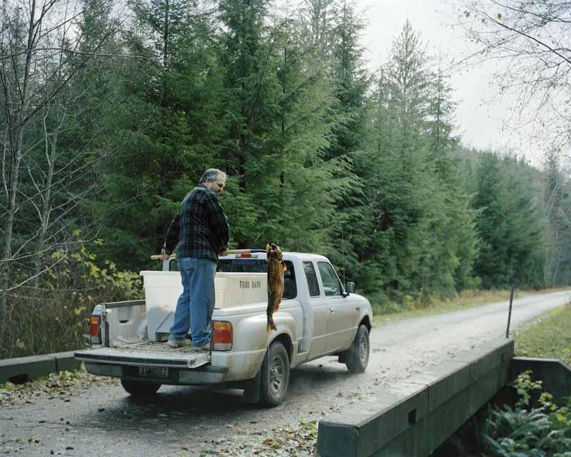 Eirik Johnson, Carl placing hatchery salmon carcasses in stream near Sappho, Washington, 2006