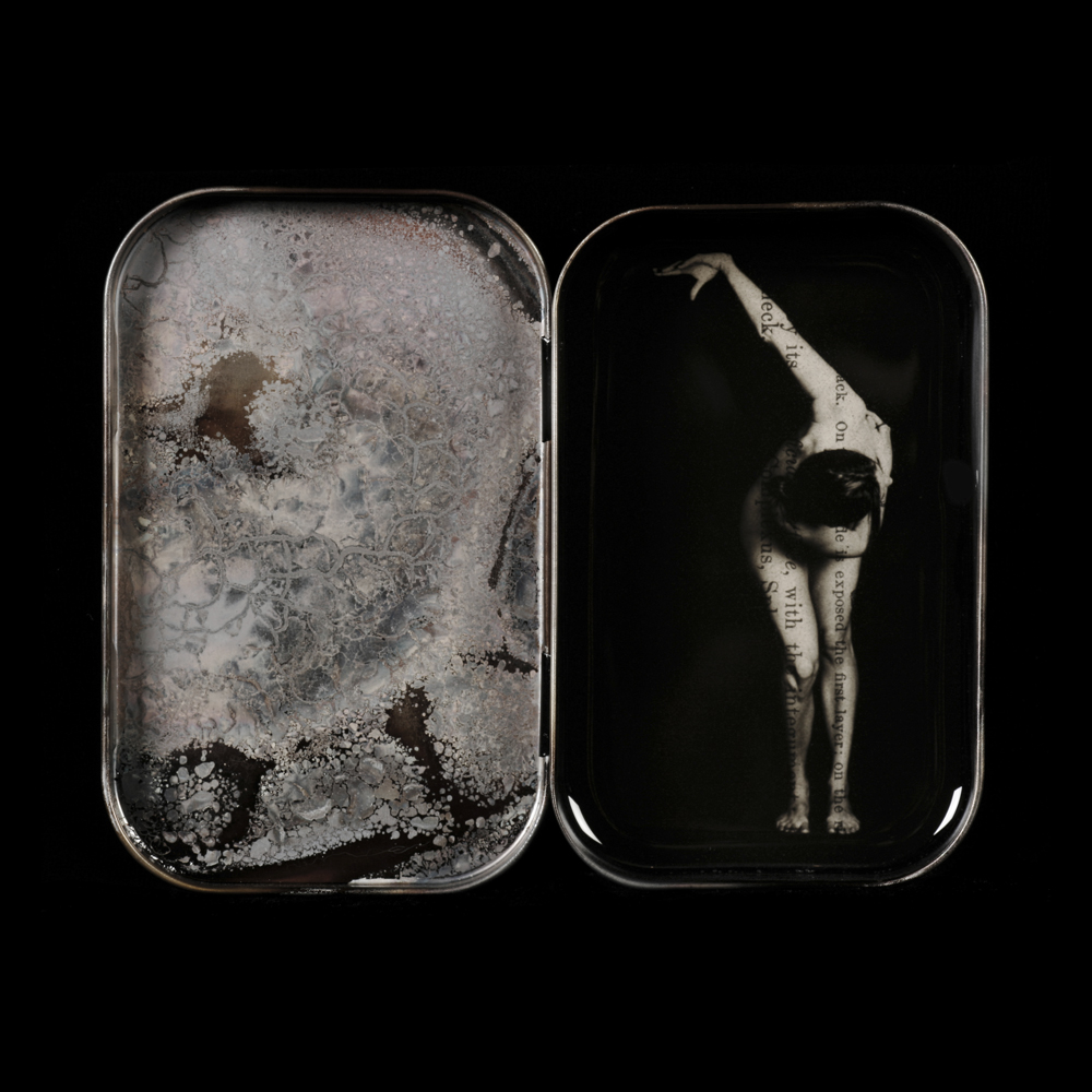 Heidi Kirkpatrick, Exposed, 2011, edition 4/5, tin, photolith film, resin, 3.75 x 4.675 x .75 inches, (SOLD)
