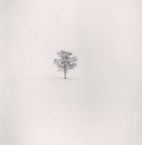 Michael Kenna, Field of Snow, Biei, Hokkaido, Japan, 2004