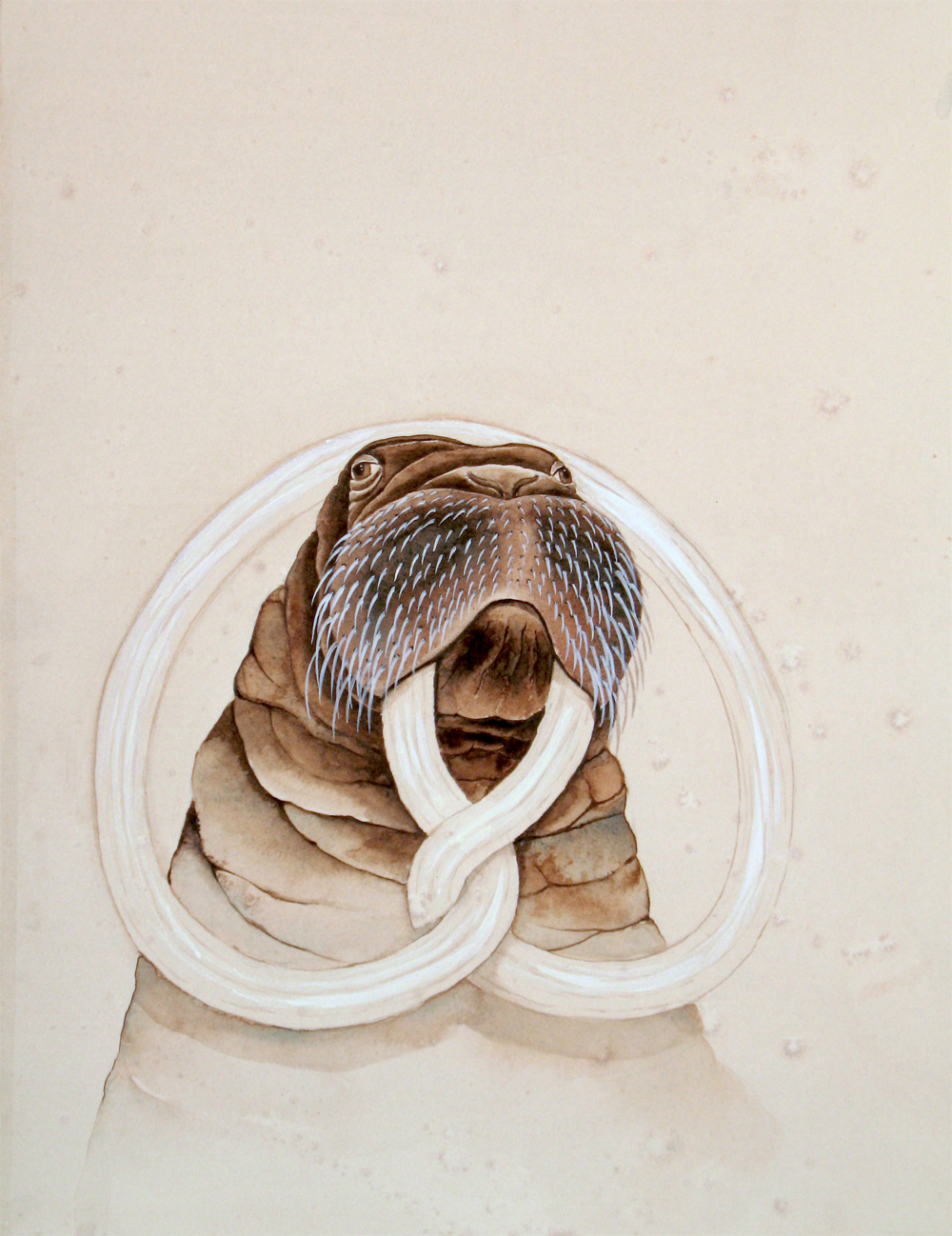 Justin Gibbens, Bavarian Walrus ii, 2017, watercolor, ink on paper, 13 x 10 inches, $850.