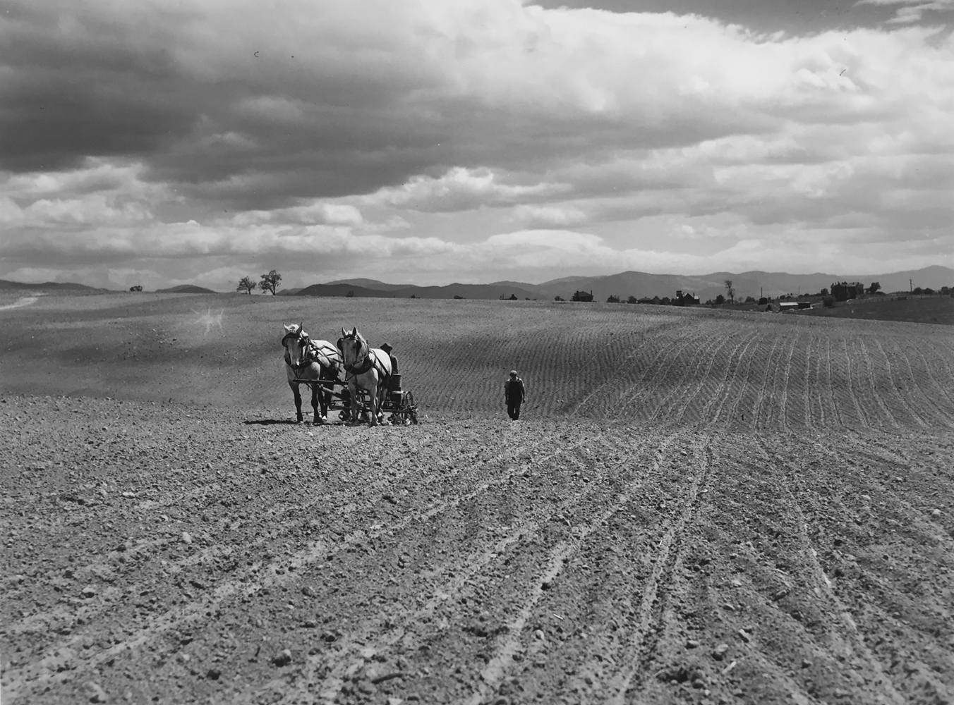 Marion Post Wolcott, Planting corn before the storm in the fertile Shenandoah Valley, Near Luray, Virginia, 1941, gelatin silver print, 11 x 14 inches, price on request