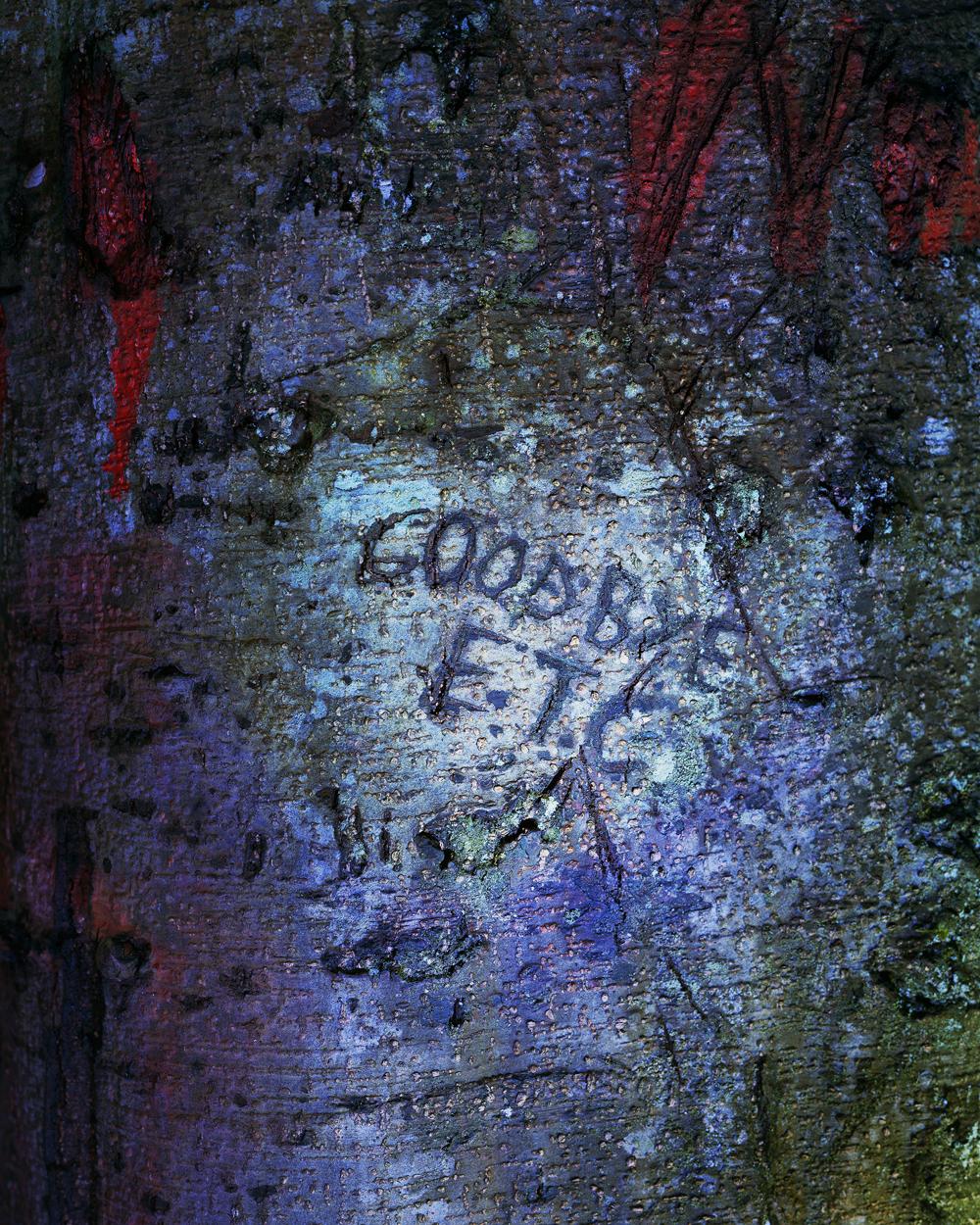 Eirik Johnson, GOODBYE E.T.C., 2016, archival pigment print, 20 x 16 inches, edition of 5, $2950.