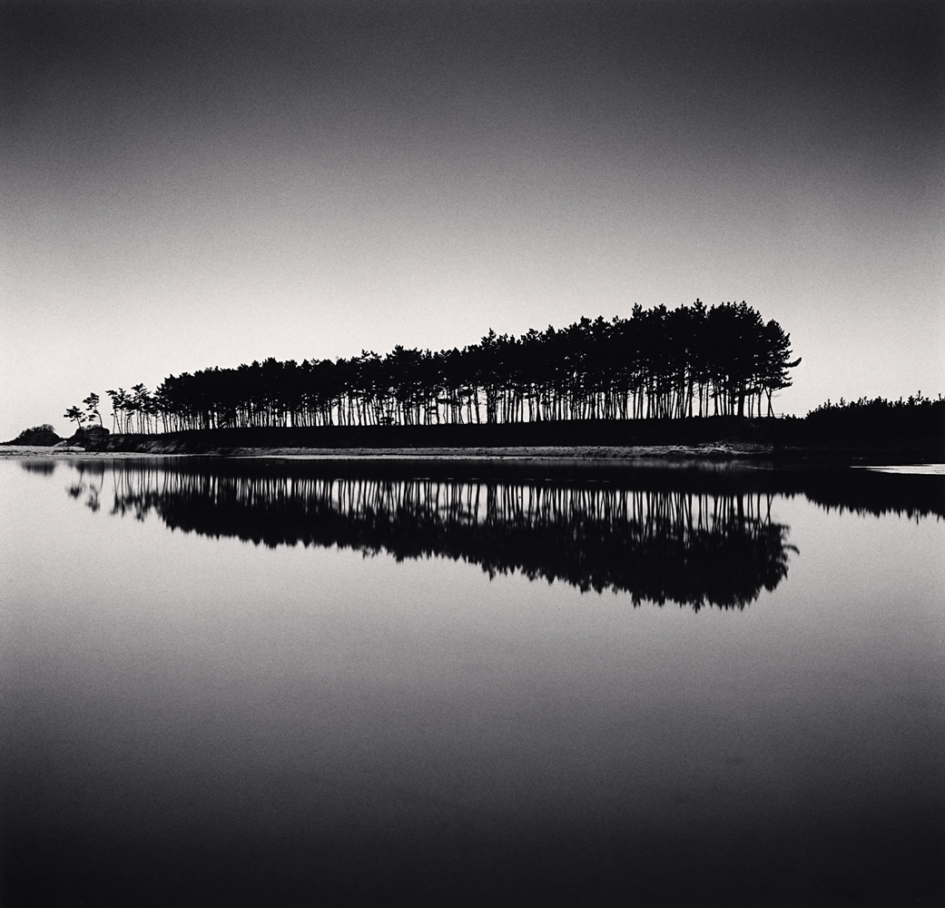 Michael Kenna, Pine Trees, Study 5, Unyeo Beach, Chungcheongnam-do, South Korea, 2018