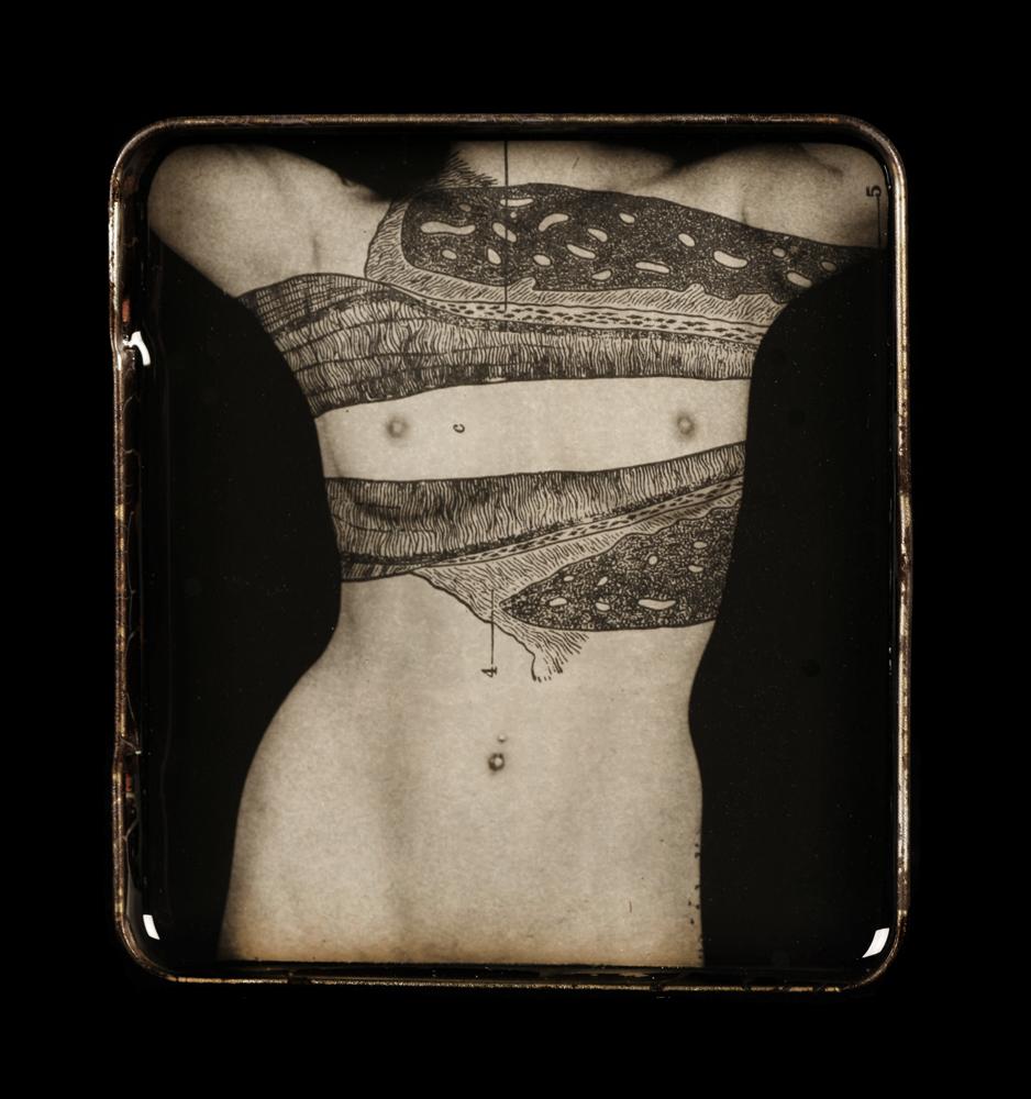 Heidi Kirkpatrick, Shield, 2012, edition 2/5, tin, photolith film, resin, 3.125 x 3.5 x .25 inches, (SOLD)