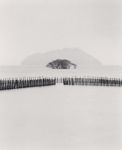 Michael Kenna, Submerged Trees, Kohoku, Honshu, Japan, 2002