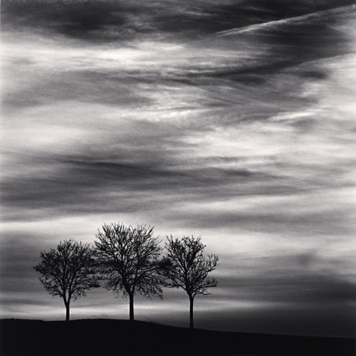Michael Kenna, Three Trees at Dusk, Fainles Moutiers, Bourgogne, France, 2013
