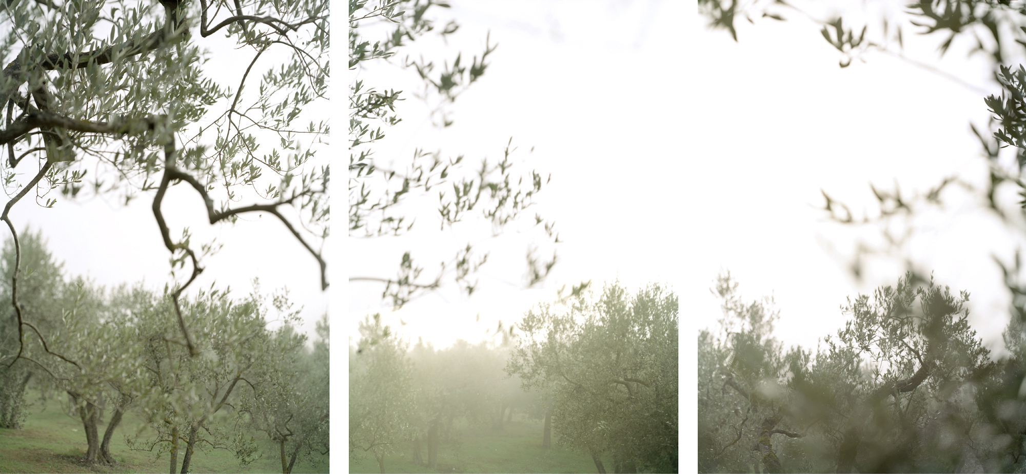 JoAnn Verburg, Crazy Fog, 2008, 3 prints, 40 inches x 7.5 feet, edition of 10, price on request
