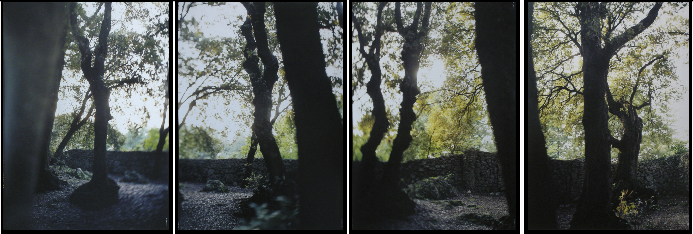 JoAnn Verburg, Four Times Three, 2007, 4 prints, 40 inches x 10 feet, edition of 10, price on request