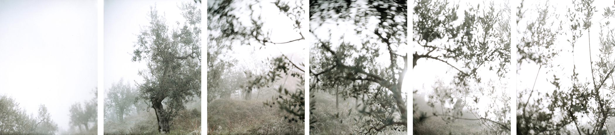 JoAnn Verburg, Thanksgiving, 2001, 10 chromogenic prints, 40 inches x 15 feet, edition of 10, price on request