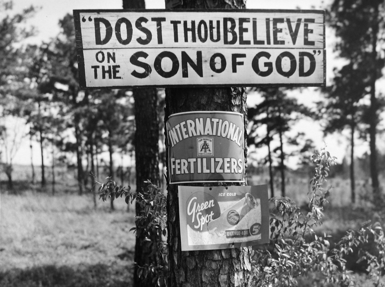 Marion Post Wolcott, Roadside Signs, GA, 1939 gelatin silver print, 11 x 14 inches