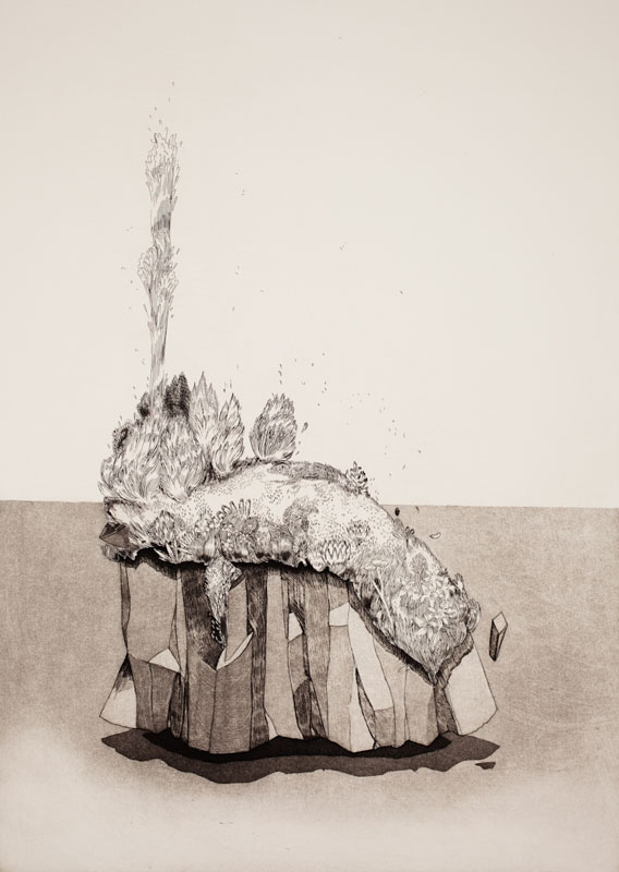 Gala Bent, Waterspout, 2011, etching, edition of 10, 20 x 14 inches, $875. framed / $600. unframed