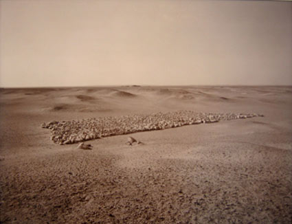 Linda Connor, Formations of Stones, 1989