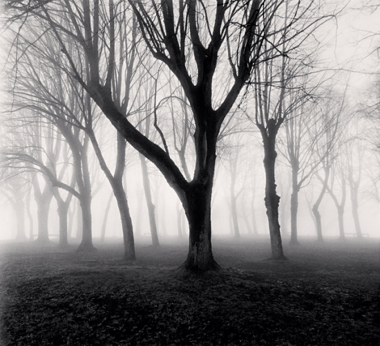 Michael Kenna, Abbey Trees, Study 1, Vezelay, Bourgogne, France, 1998