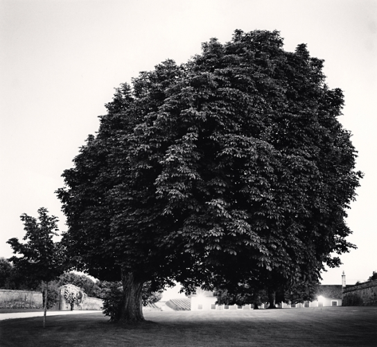 Michael Kenna, Chateau Lafite, Study 12, Bordeaux, France, 2012