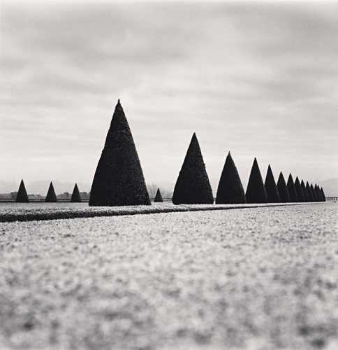 Michael Kenna, Eighteen Hedges, Versailles, France, 1998