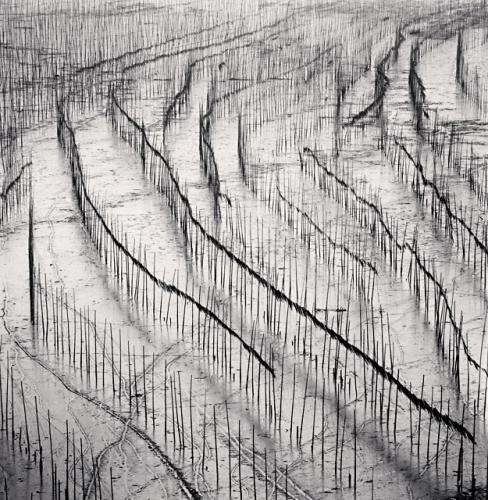 Michael Kenna, Seaweed Farms, Study 10, Xiapu, China, 2010