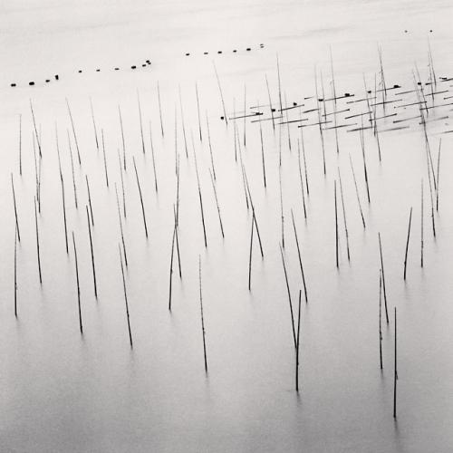 Michael Kenna, Seaweed Farms, Study 9, Xiapu, China, 2010
