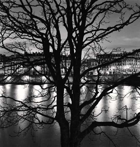 Michael Kenna, Tree, Seine and Quai Voltaire, Paris, France, 2013