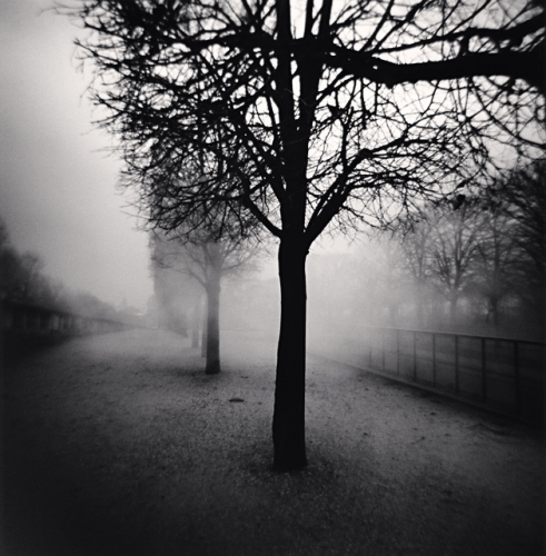 Michael Kenna, Tuileries Gardens, Study 5, Paris, France, 2004