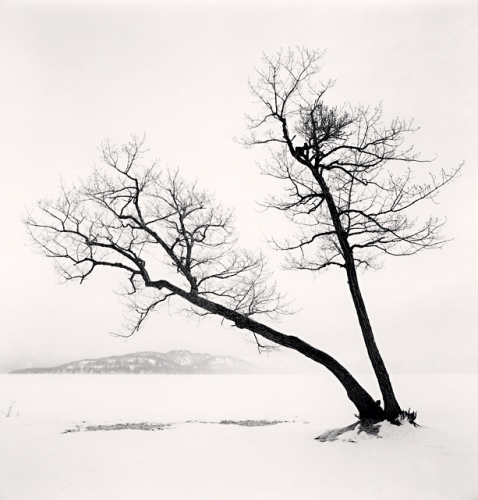 Michael Kenna, Two Leaning Trees, Kussharo Lake, Hokkaido, Japan, 2013