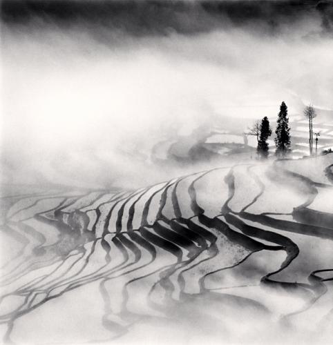 Michael Kenna, Yuanyang, Study 1, Yunnan, China, 2013