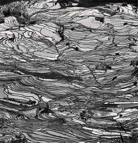 Michael Kenna, Yuanyang, Study 5, Yunnan, China, 2013