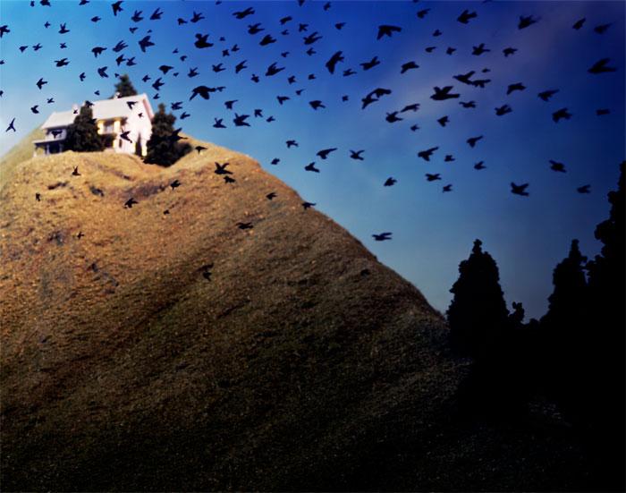 Lori Nix, Birds in Flight, 2001