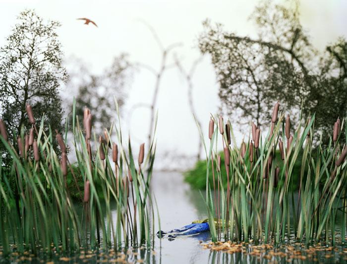 Lori Nix, Floater, 2001