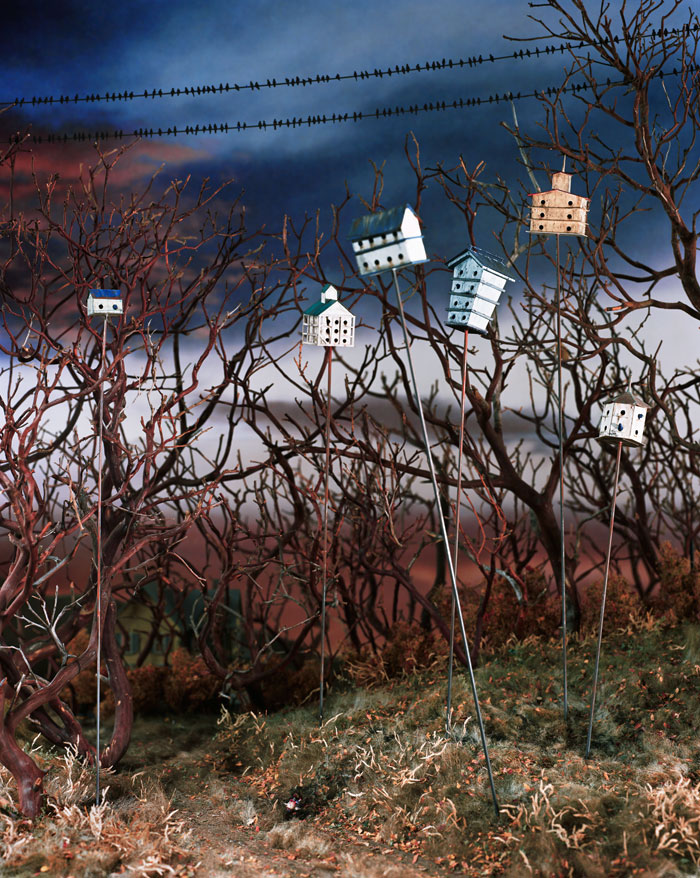 Lori Nix, Birdhouses, 2003