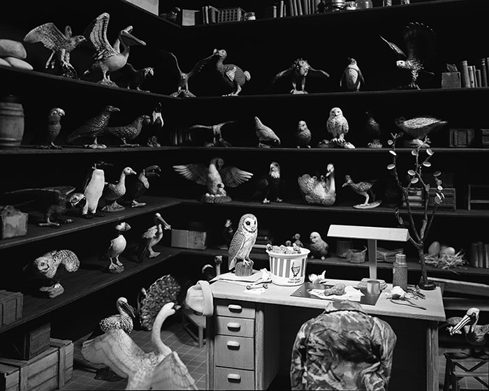 Lori Nix, Bird Room, 2014