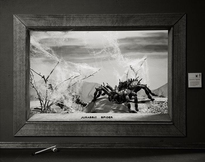 Lori Nix, Jurasic Spider, 2009