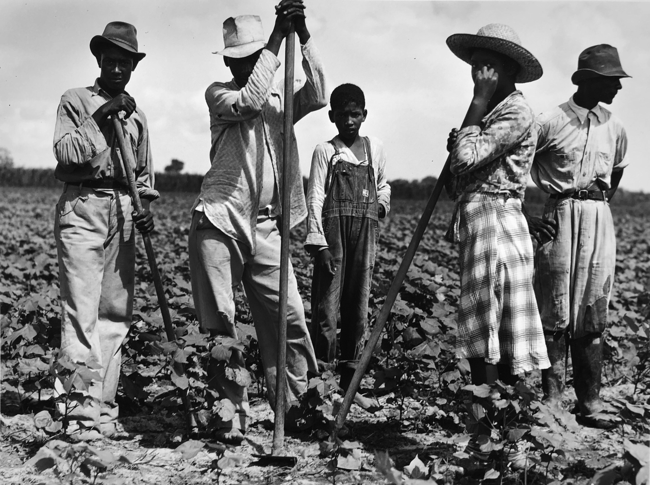 Marion Post Wolcott, Men and women working in a field, Bayou Bourdeaux Plantation, Natchitoches, LA, 1940, gelatin silver print, 11 x 14 inches, signed by artist, $3000.