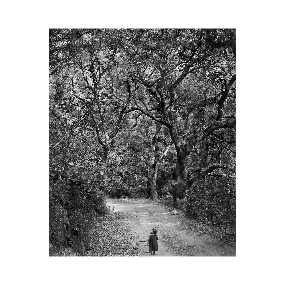 Wynn Bullock, from Photographs 1951-1973 portfolio, Child on Forest Road, 1958, 12 gelatin silver prints, 9.25 x 7.125 inches, edition of 25, price on request