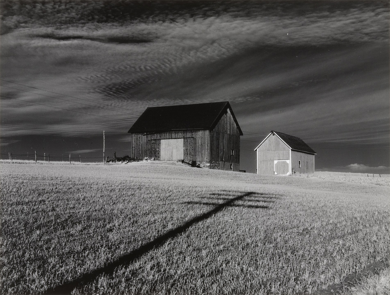 Minor White, from Jupiter portfolio - Two Barns, Danville, NY, 1955, portfolio contains 12 gelatin silver prints, 9 x 12 inches, edition of 100, price on request